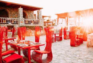 19-blue-monkey-asian-restaurant
