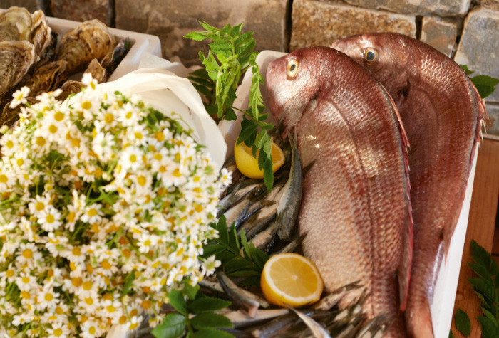 01-petrino-seafood-by-the-beach-in-grecotel-amirandes-boutique-resort
